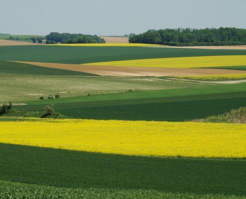 La tentation du paysage | Jean-Paul Curnier